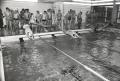 wa-1976-vereineschwimmen-a080