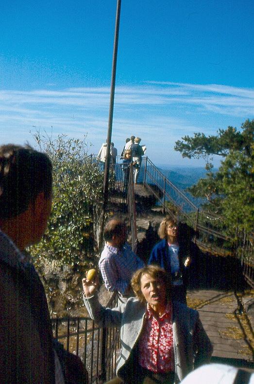 wb-1985-pfalzwanderung-a050
