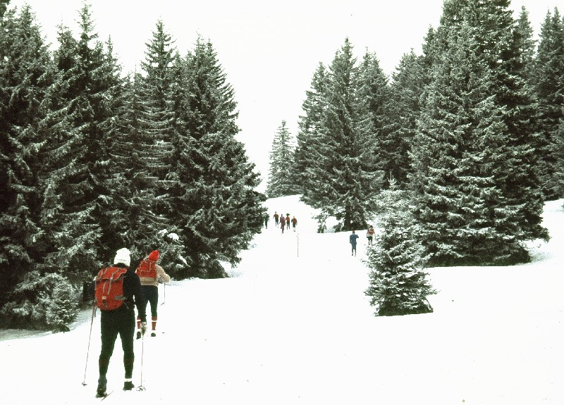 wb-1986-schonach-belchen-a360