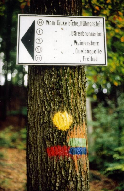 wb-1989-pfalzwanderung-a060