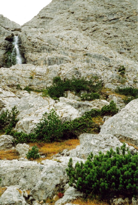 wb-1990-groedner-tal-b380